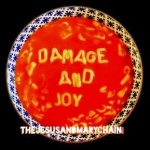 Damage and Joy (cd)